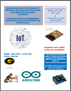 IOT Summer Camp