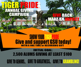 Tiger Pride Annual Giving Campaign