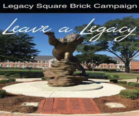 Tiger Brick Giving Campaign