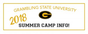 GSU 2018 summer camps banner