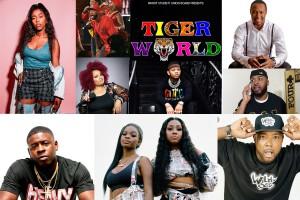 COLLAGE-TigerWorld-Artists